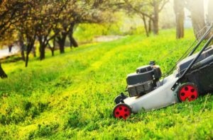 5 Best Lawn Mowers for Steep Hills, Slopes, and Banks (2021)